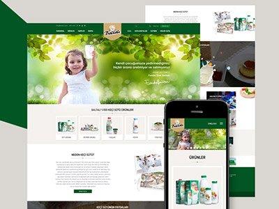 Web Tasarım İzmir